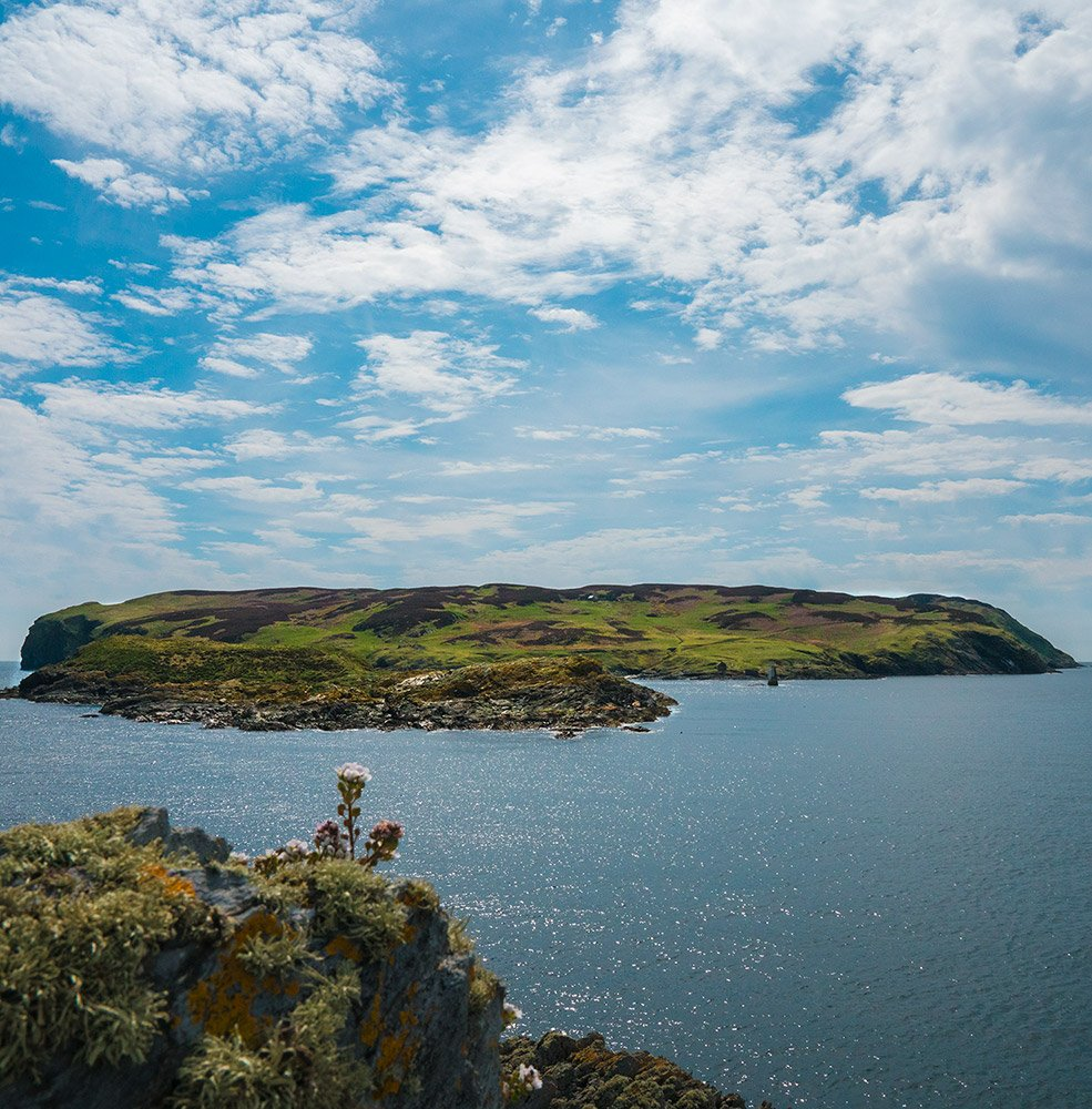 Calf of Man Island Photograph.