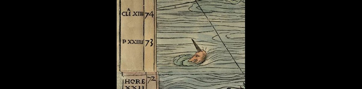 sea monster- sea unicorn from the Carta Marina