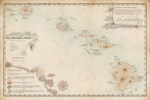 Hawaii decorative wall map. Hand-drawn limited edition.