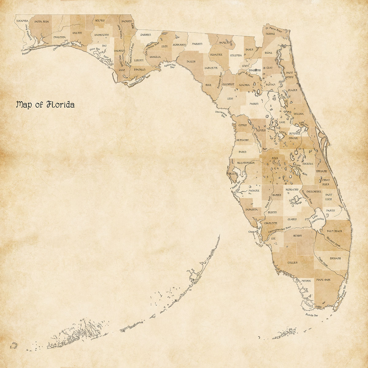 map for Florida counties progress