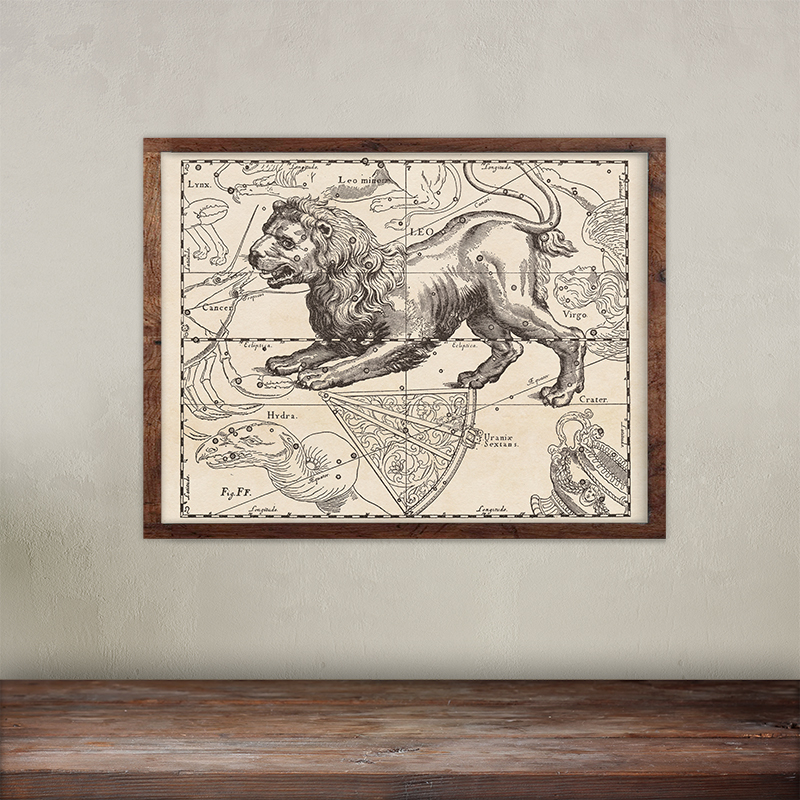 Buy Johannes Hevelius constellations of Leo map print.
