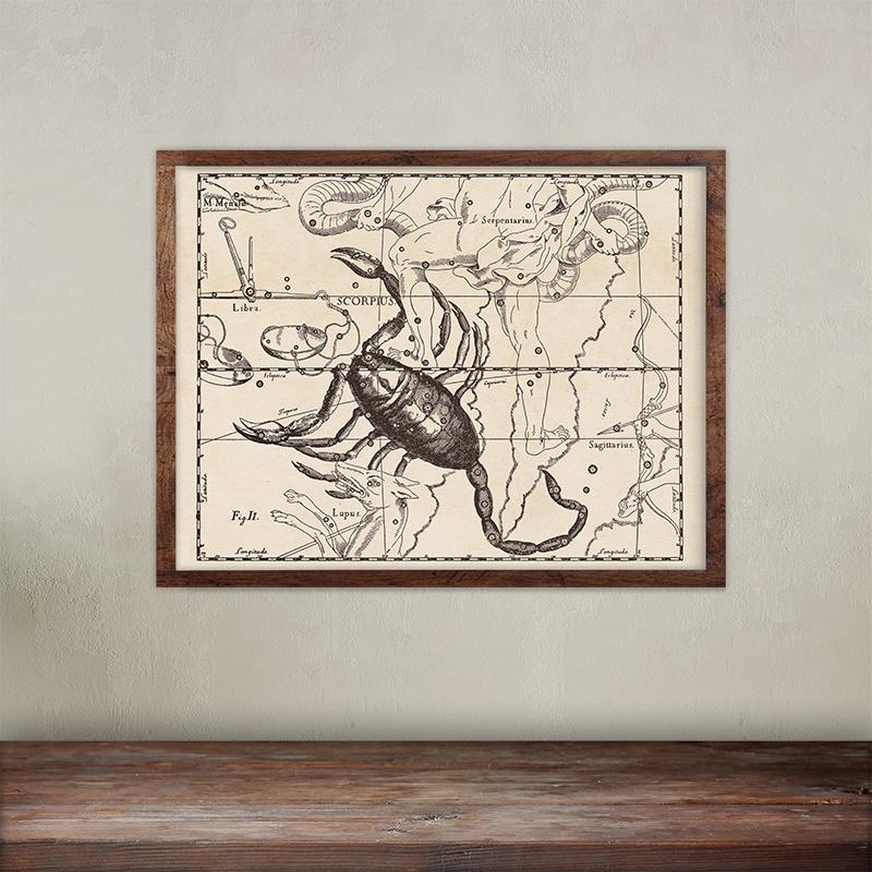 Buy Johannes Hevelius constellations of Scorpio map print.