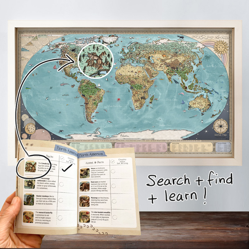 Buy a fun learning animal map for kids room